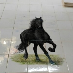 Fries paard op Friese witjes