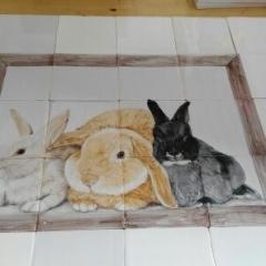 konijnen in hok op 12 tegels