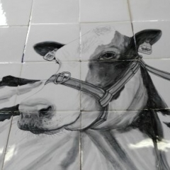 grijs wit koeienkop  op 12 tegels